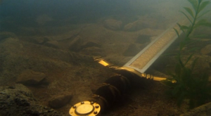 Excalibur_at_the_bottom_of_the_Lake_of_Avalon
